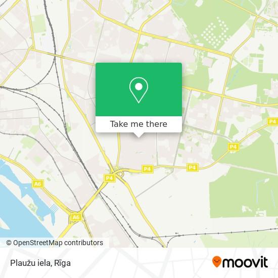 Plaužu iela map
