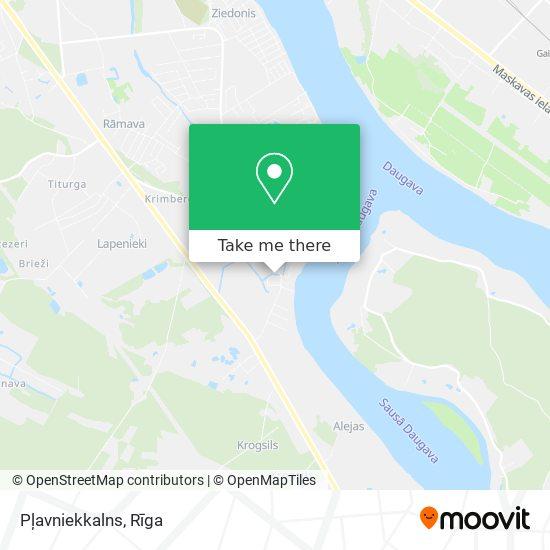 Pļavniekkalns map