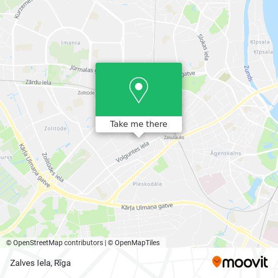 Zalves Iela map