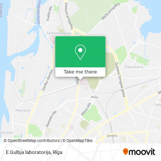 E.Gulbja laboratorija map