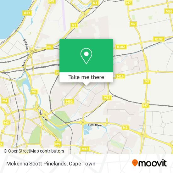 Mckenna Scott Pinelands map