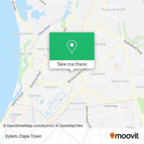 Xylem map