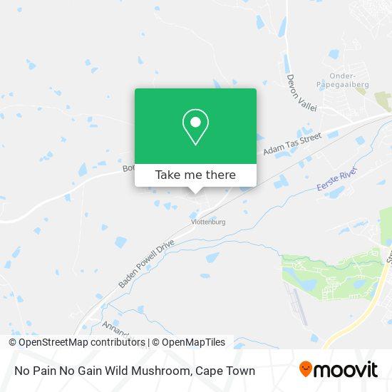 No Pain No Gain Wild Mushroom map