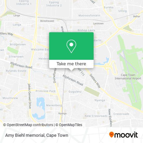 Amy Biehl memorial map