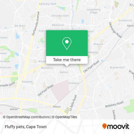 Fluffy pets map