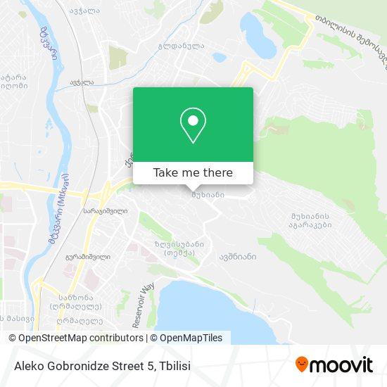 Aleko Gobronidze Street 5 map
