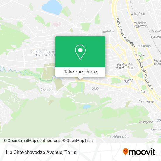 Ilia Chavchavadze Avenue map