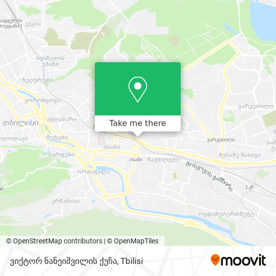 ვიქტორ ნანეიშვილის ქუჩა map