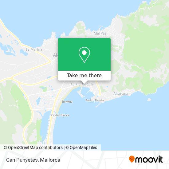 mapa Can Punyetes