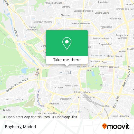 Boyberry Boyberry Madrid