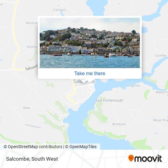 Salcombe map