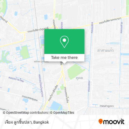 เจียง ลูกชิ้นปลา map