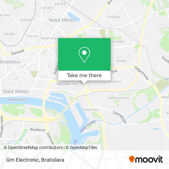 Gm Electronic map