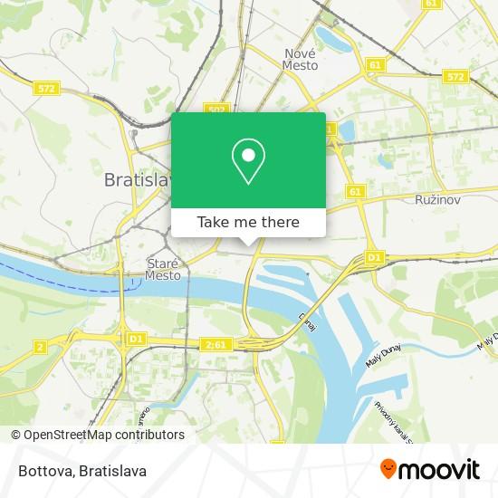 Bottova map