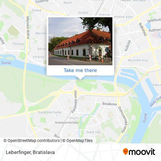 Leberfinger map