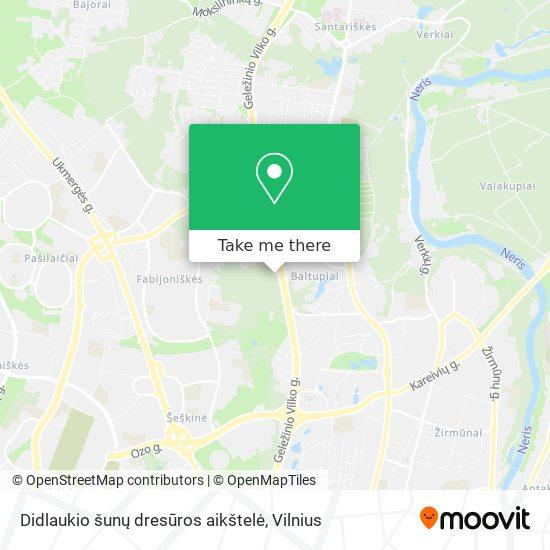 Didlaukio šunų dresūros aikštelė map