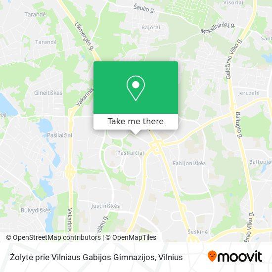 Žolytė prie Vilniaus Gabijos Gimnazijos map