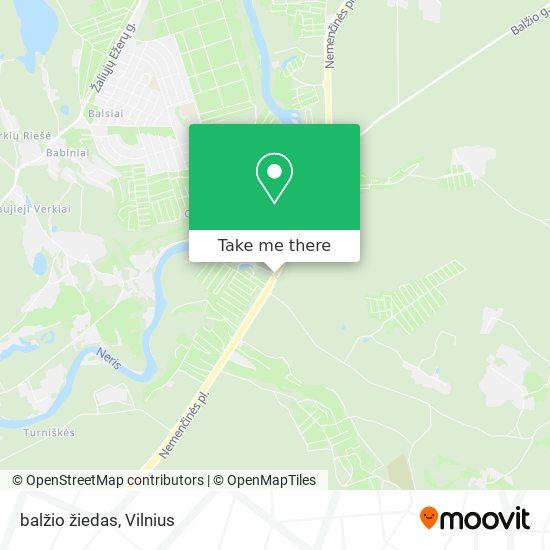 balžio žiedas map