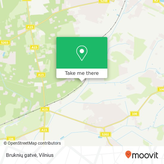 Bruknių gatvė map