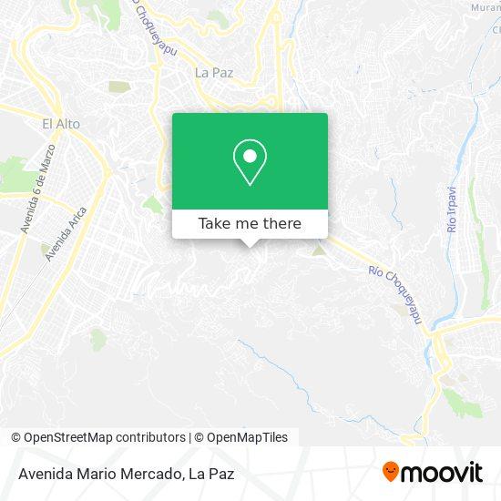 Avenida Mario Mercado map