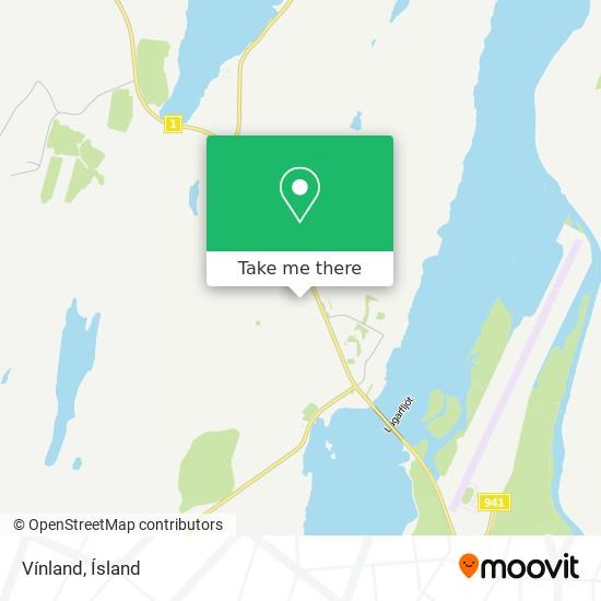 Vínland map