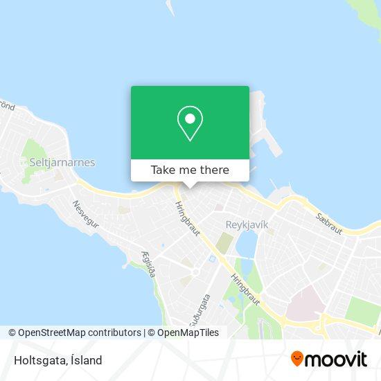 Holtsgata map