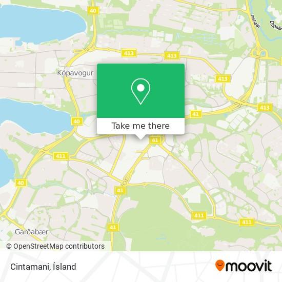Cintamani map