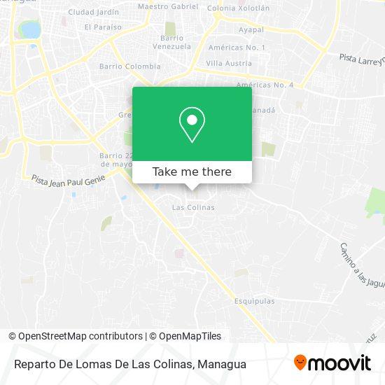 Reparto De Lomas De Las Colinas map