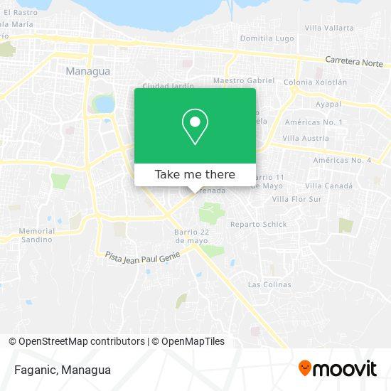 Faganic map