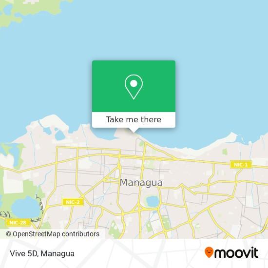 Vive 5D map