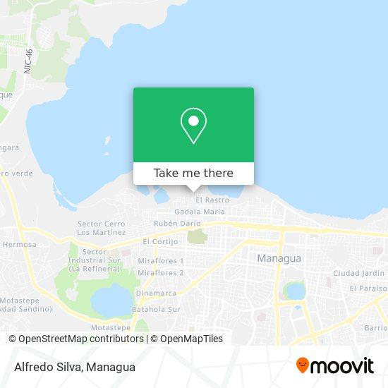 Alfredo Silva map