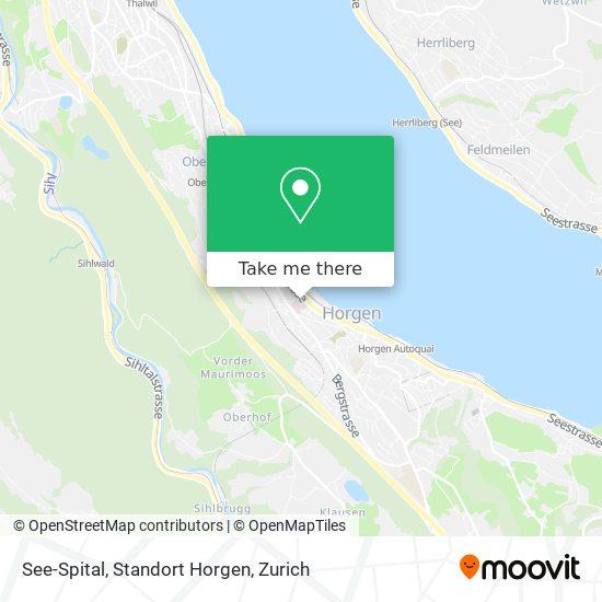 See-Spital, Standort Horgen map