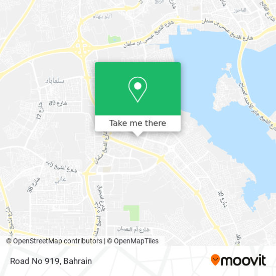 Road No 919 map