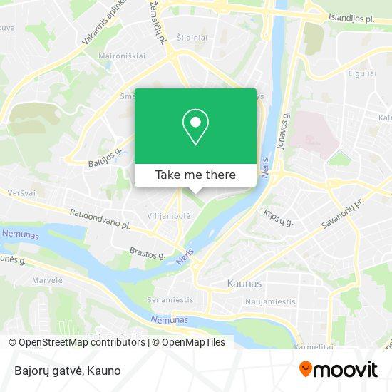 Bajorų gatvė map