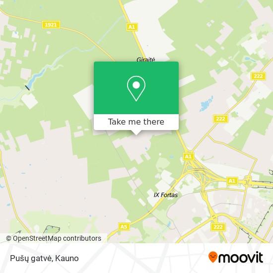 Pušų gatvė map