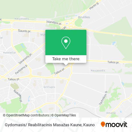 Gydomasis/ Reabilitacinis Masažas Kaune map