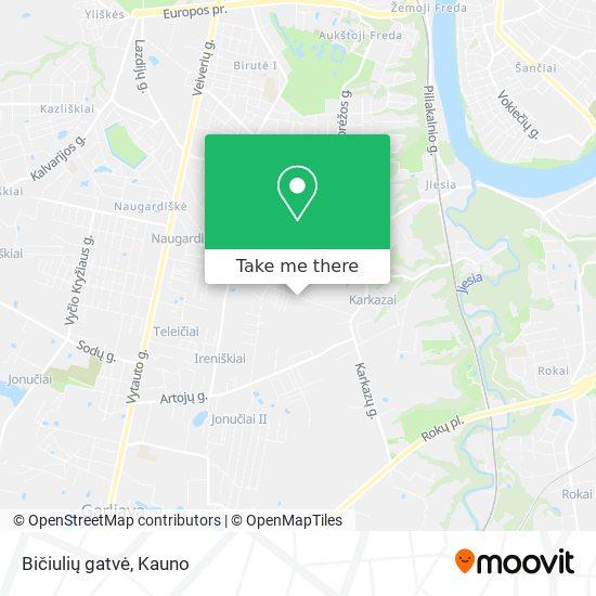 Bičiulių gatvė map