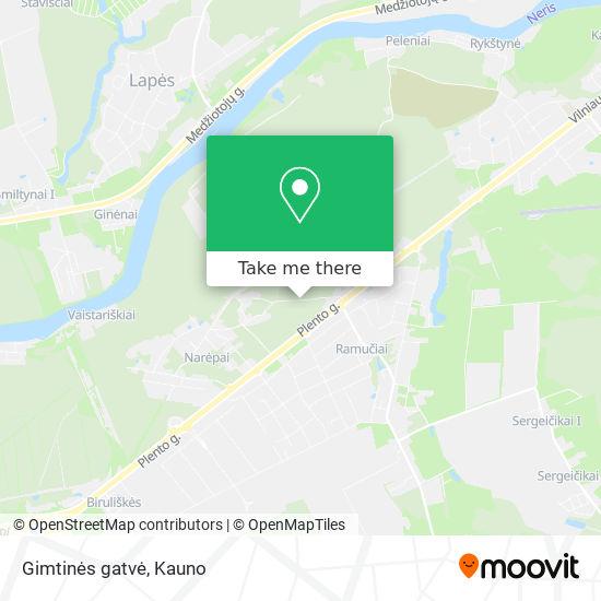 Gimtinės gatvė map