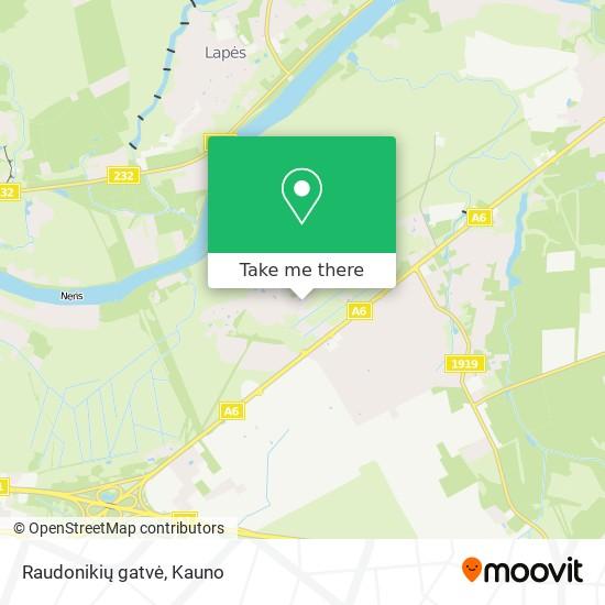 Raudonikių gatvė map