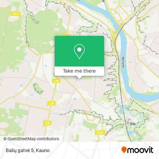 Balių gatvė 5 map