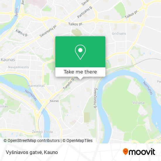 Vyšniavos gatvė map
