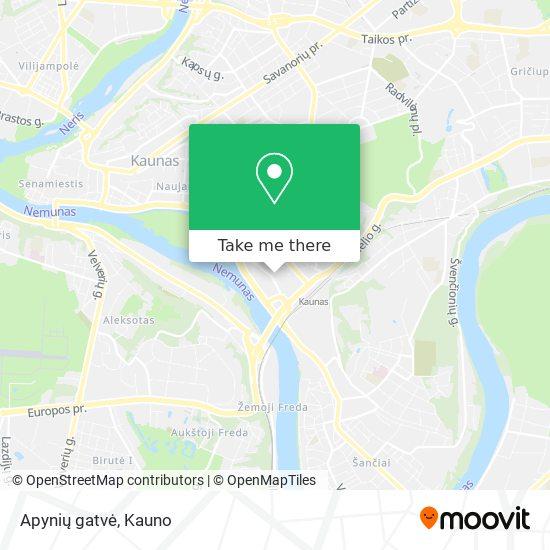 Apynių gatvė map