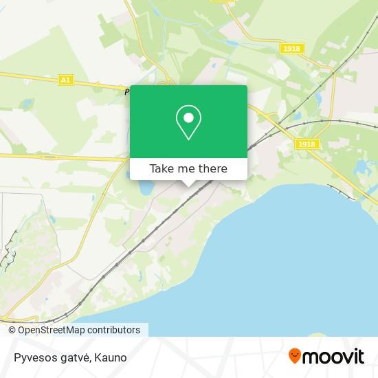 Pyvesos gatvė map