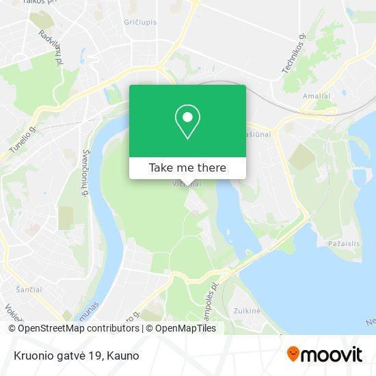 Kruonio gatvė 19 map