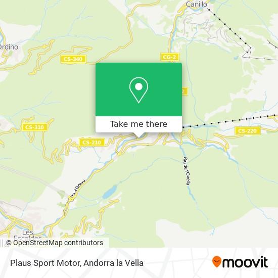 Plaus Sport Motor map