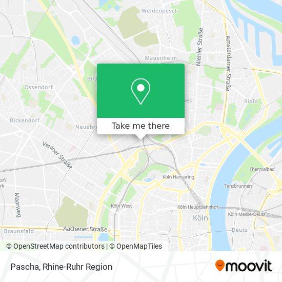 Pascha koln Category:Pascha (Köln)