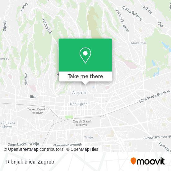 Ribnjak ulica map