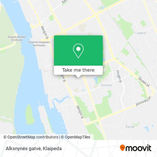 Alksnynės gatvė map