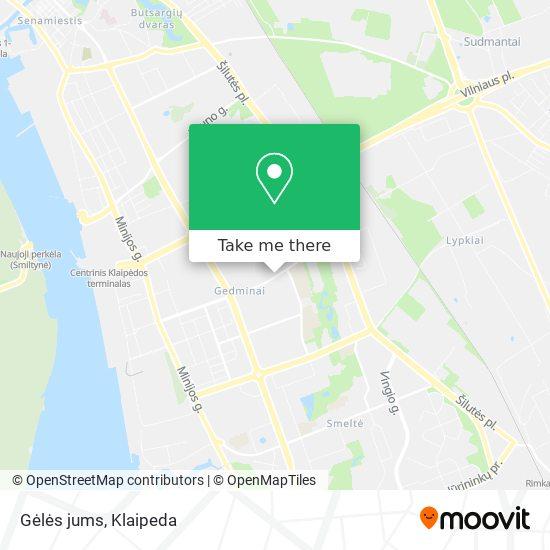 Gėlės jums map