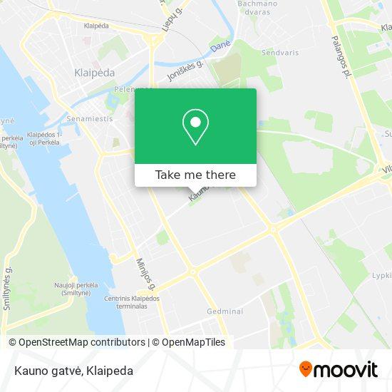 Kauno gatvė map